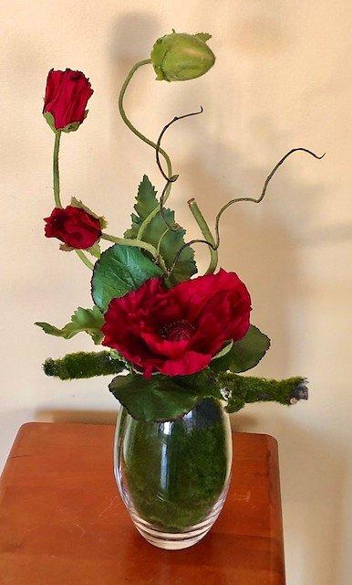 Callifornia Poppy